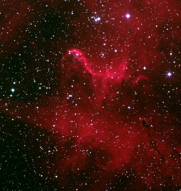 Sharpless Sh 2-232 - Dragon's head (colour)