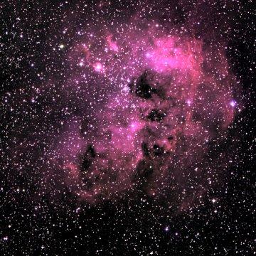 Sponge nebula (Sh 2-236)