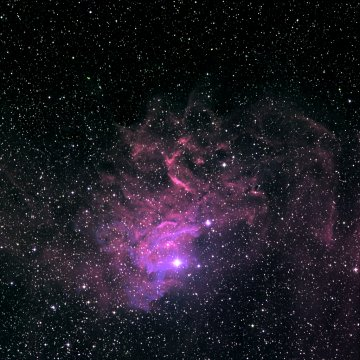 Flaming Star nebula (Sh 2-229)