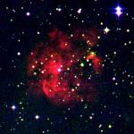RCW 41